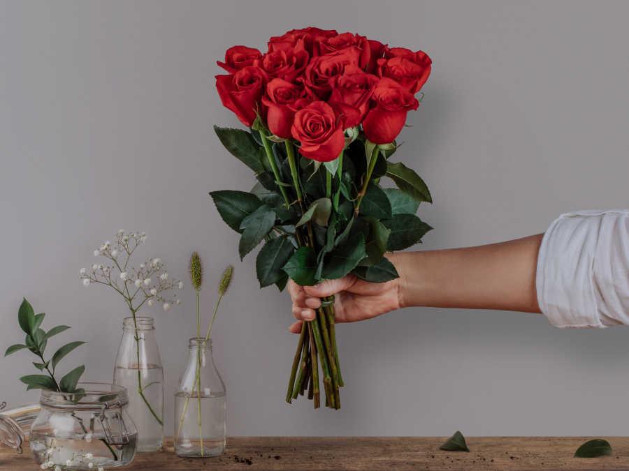 14 Rosas Nacionais Vermelhas (vaso não incluso)
