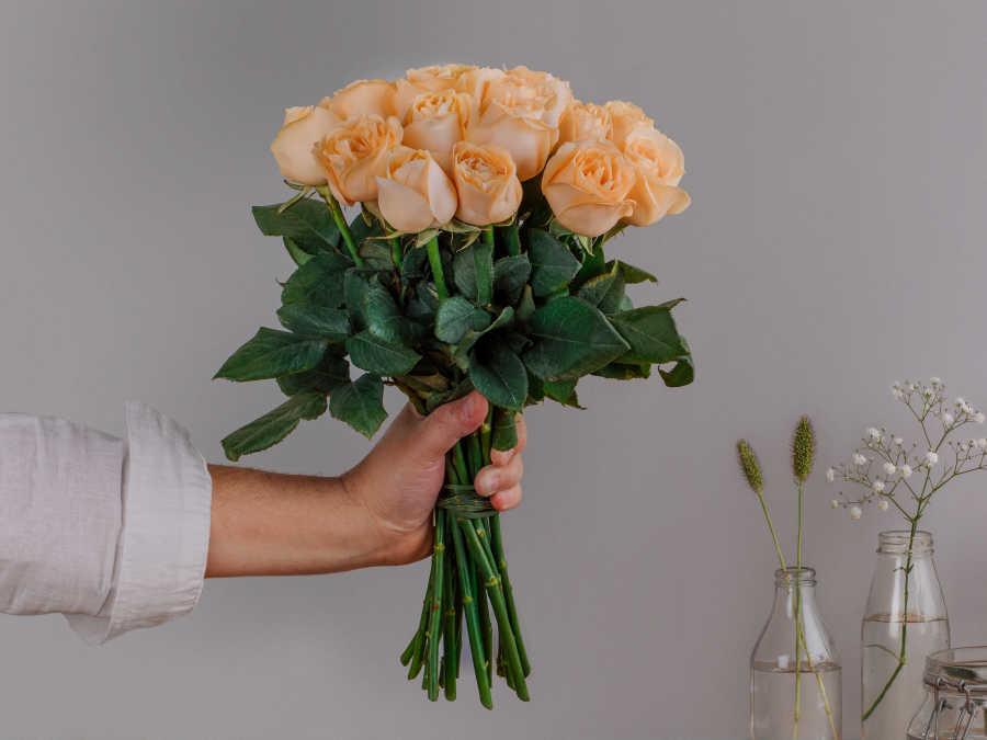 16 Rosas Nacionais Cumbia (vaso não incluso)